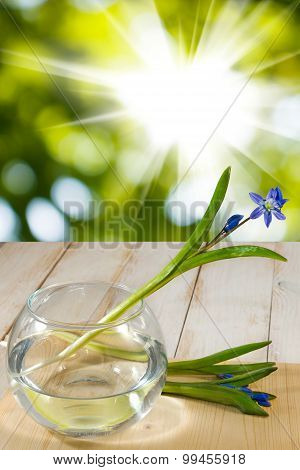 Snowdrop In A Vase On A Wooden Table
