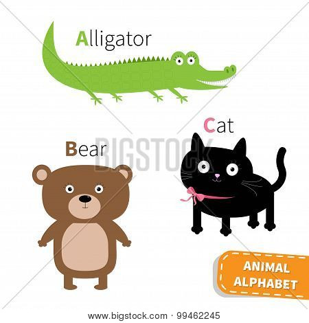 Letter A B C Alligator Cat Bear Zoo Alphabet. English Abc With Animals Education Cards For Kids Isol