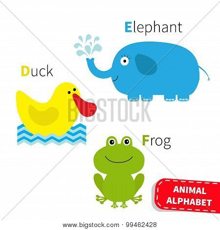 Letter D E F Duck Elephant Frog Zoo Alphabet. English Abc With Animals Education Cards For Kids Isol