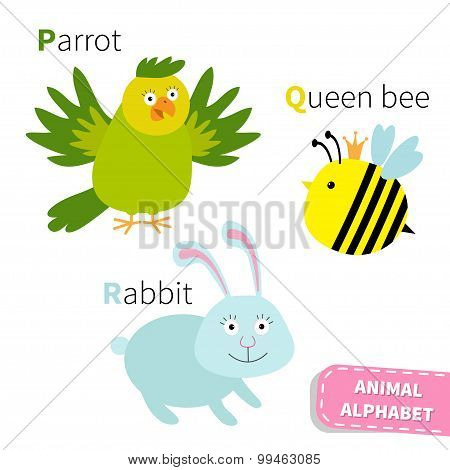 Letter P Q R Parrot Queen Bee Rabbit Zoo Alphabet. English Abc With Animals Education Cards For Kids