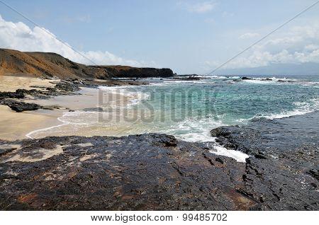 Clove Near A White Sand Beach