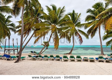 Panorama of the beach and the Caribbean Sea with palm trees.