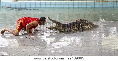 Traditional for Thailand Show of crocodiles