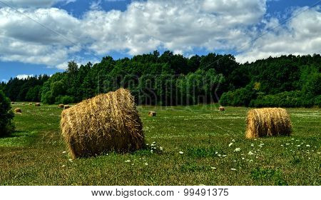 Straw bales on meadow