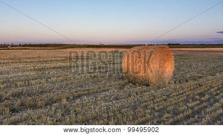 A hay bale in a farmers field