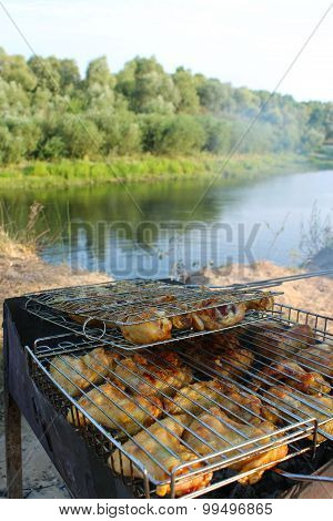 barbecue from chicken 's meat cooked in the nature
