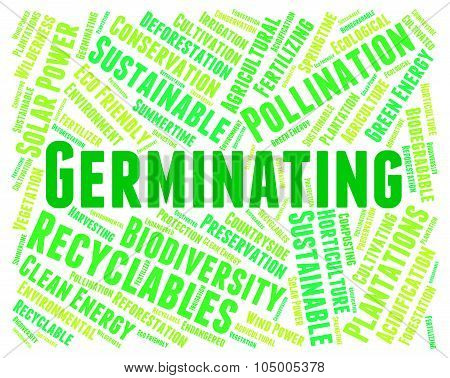 Germinating Word Represents Growth Grows And Sowing