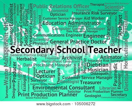 Secondary School Teacher Represents Words Senior And Occupations