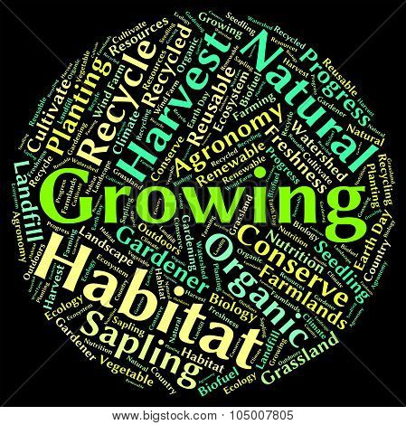 Growing Word Means Growth Sowing And Sow