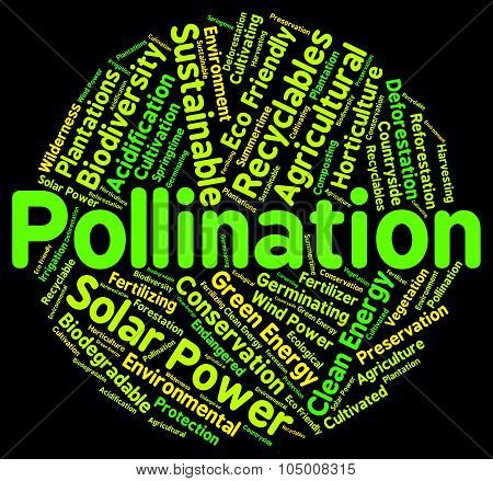 Pollination Word Means Fertilize Pollinates And Propagation