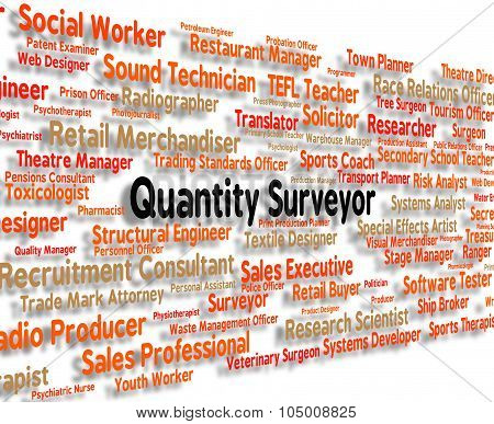 Quantity Surveyor Shows Employment Measurer And Words