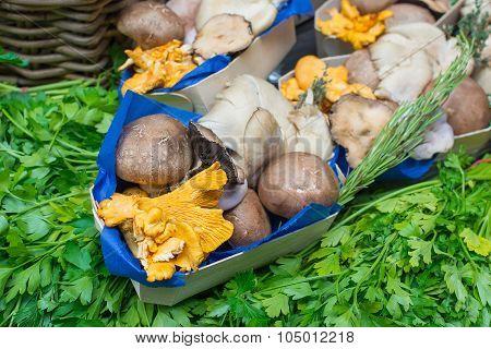 Basket of wild shiitake mushrooms cut ready for cooking