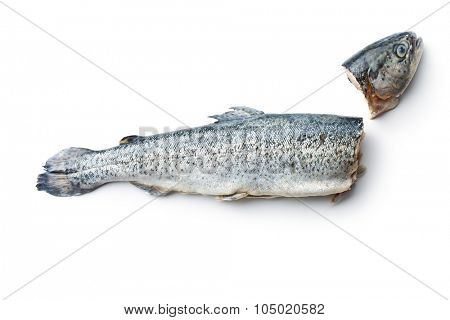 the gutted trout on white background