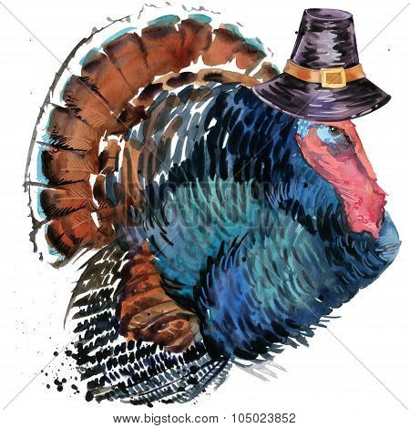 Thanksgiving Day turkey and hat for Thanksgiving. watercolor illustration
