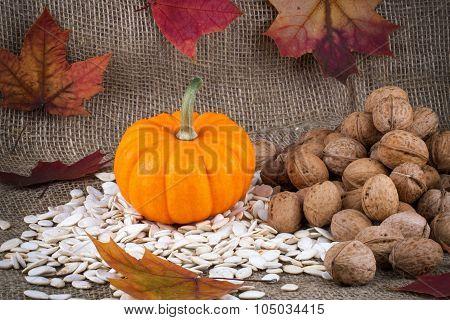 Closeup On Small Pumpkin And Seeds On Burlap