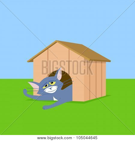 Cat In Doghouse