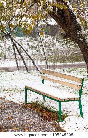 First Snowfall And Empty Bench In City Park