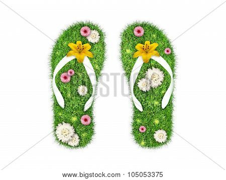 Green Grass Flip-flops Isolated
