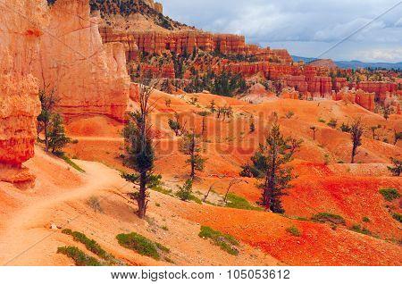 Bryce Canyon trails, Utah