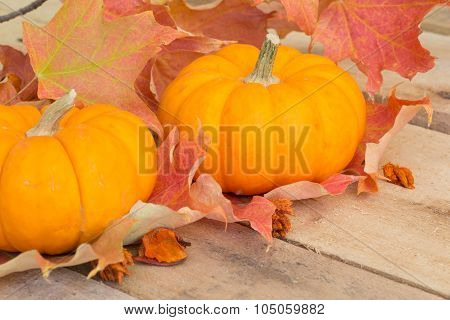 Fall Pumpkins And Leaves