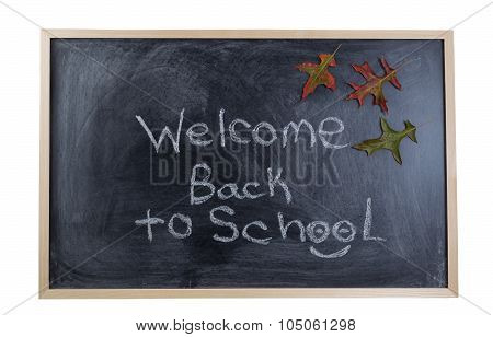 Chalkboard Welcoming The Student Back To School In The Autumn Season