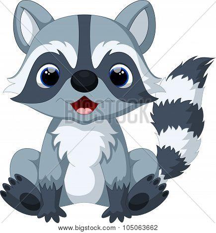 Cute raccoon cartoon