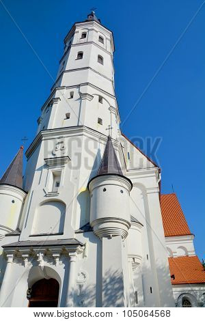 The siauliai Cathedral Saint Apostles Peter and Paul