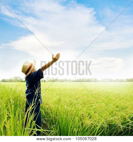 Boy Feel Good On Rice Field