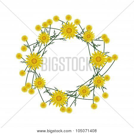 Beautiful Yellow Daisy Wreath on White Background