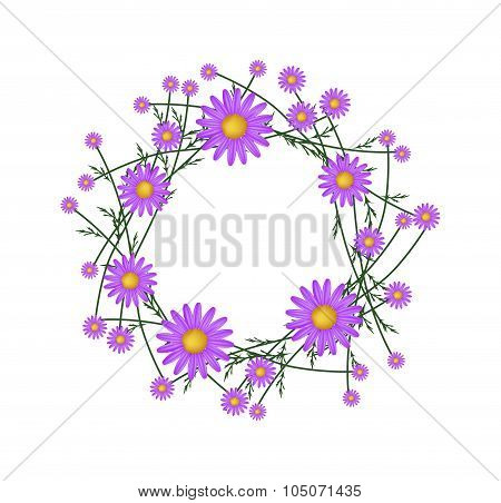 Beautiful Purple Daisy Wreath on White Background