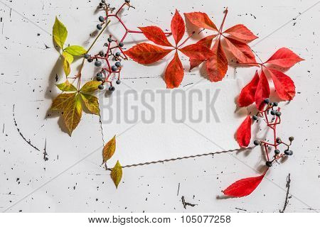 Blank Paper Sheet With Dry Leaves, Top View