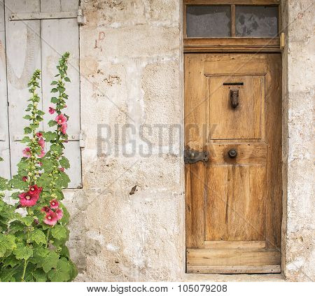 Old door and mallow