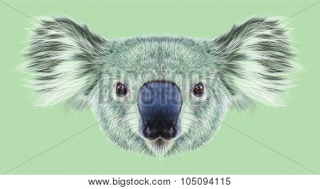 Illustrative Portrait of Koala Bear.