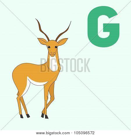 Alphabet letter G gazelle children vector