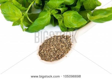 Dry And Fresh Basil