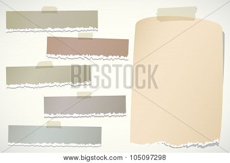Set of various brown torn note papers with adhesive tape on background
