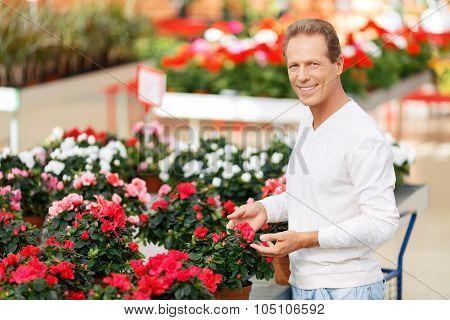 Positive customer choosing flowers
