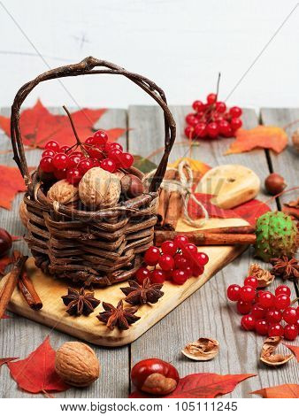 Autumn Basket With Nuts And Viburnum (guelder Rose)