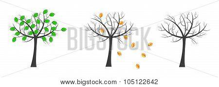 Vector Trees