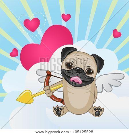 Cupid Pug Dog