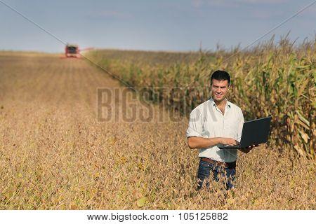 Man With Laptop In Soybean Field
