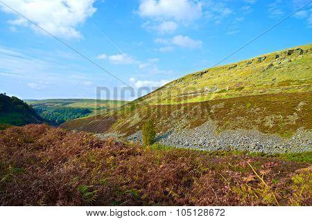 Woodhead Countryside Landscape Uk....