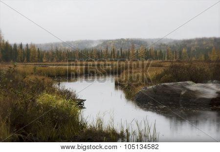 Costello Creek Algonquin Park