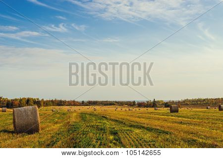 Scenic View Of Hay Stacks At Fall