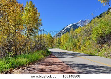 Alpine Road Through The Mountains With Colorful Aspen During Foliage Season