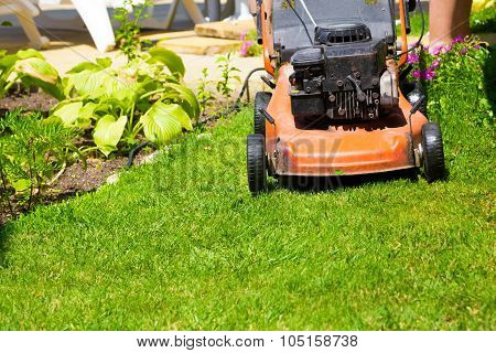 Lawn Mower On A Fresh Lawn In The Garden