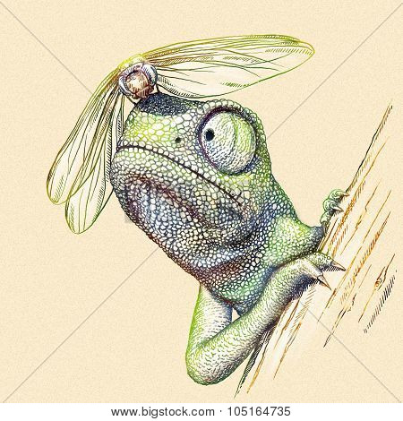 engrave chameleon illustration