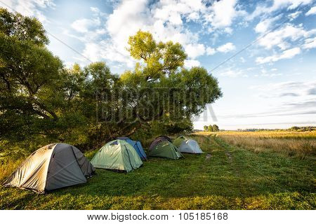 Some Tourist Tents Standing Under Trees On The Edge Of A Field In Solar Summer Morning