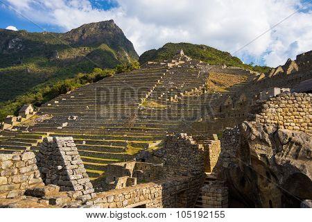 Sunlight On Machu Picchu Terraces From Below, Peru