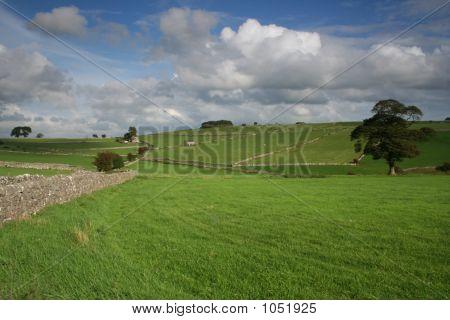 Larkstone Lane